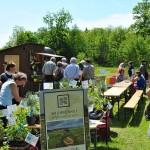 Bei unseren Mitbrüdern vom brunnenhof gab es Kräuterpflanzen und Kräuterprodukte
